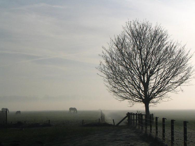 Peter Polling maakte de foto van het mistig landschap
